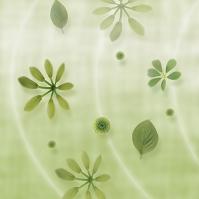 グリーンと花の和風イメージ