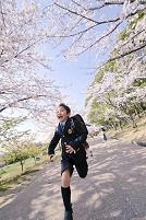 桜並木道を走る日本人の男の子