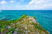 黒島 断崖と東シナ海