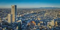 東京都 都市風景と富士山