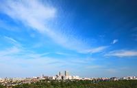 市街地の大空