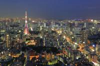 東京都 六本木ヒルズから望む東京タワーの夜景