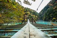 寸又峡 夢の吊り橋 秋 紅葉 静岡県