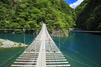 静岡県 寸又峡夢の吊橋