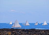 ポルトガル  青空と海に浮かぶヨット