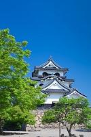 滋賀県 彦根城の天守閣