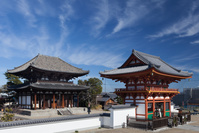 奈良県 喜光寺(菅原寺) 本堂と南大門