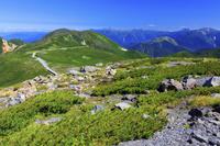 大黒岳より桔梗ヶ原と乗鞍スカイライン