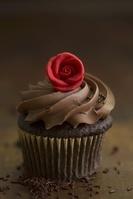 チョコレート カップケーキ