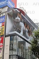 新宿駅前に「3D巨大猫」、大型街頭ビジョンでプレ放映