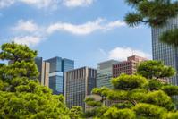 東京都 皇居外苑
