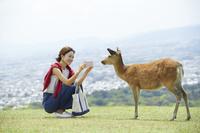 奈良公園 スマホで鹿を撮影する日本人女性