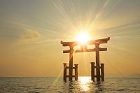 滋賀県 白鬚神社 夜明けの湖中大鳥居と琵琶湖から昇る朝日