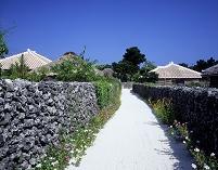竹富島の道と家並み