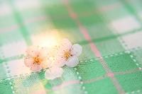 梅と緑のチェック柄のテーブルクロス
