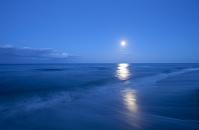 海に映る月