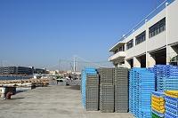 兵庫県 神戸 垂水漁港 イカナゴの水揚げ