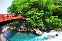 栃木県, 日光市, 神橋