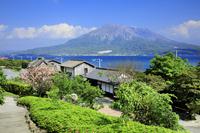鹿児島県 仙厳園と桜島