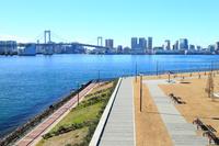東京都 豊洲ぐるり公園とレインボーブリッジ
