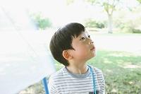 新緑と昆虫採集する日本人の男の子