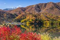 長野県 紅葉映す青木湖