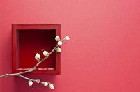 白梅の枝と朱升