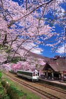 福島県 桜の湯野上温泉駅