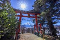 山梨県 富士山と鳥居