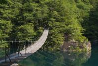 静岡県 新緑の寸又峡 夢の吊橋
