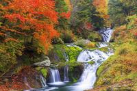 長野県 紅葉の横谷峡 おしどり隠しの滝
