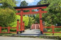 和歌山県 新緑の丹生都比売神社 外鳥居と輪橋