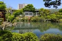 新緑、相楽園の池泉回遊式庭園