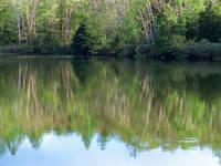 長野県 三角池