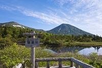 青森県 睡蓮沼