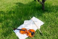 木陰のバイオリン