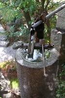 京都府 平安女学院有栖館庭園 手水舎