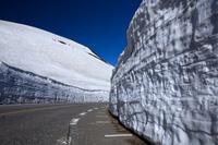 富山県 室堂付近にある雪の大谷