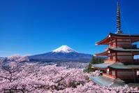山梨県 富士山と新倉浅間神社