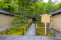 京都府 大徳寺 高桐院の参道