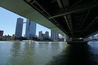 東京 佃大橋の下から