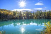 北海道 紅葉した青い池と太陽