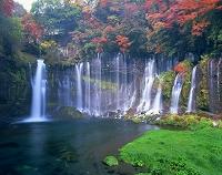 静岡県・富士宮市 白糸の滝