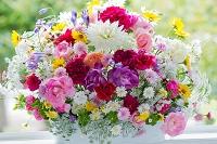 ダリアとバラと姫ヒマワリの花