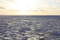 北海道 流氷の夕景