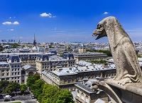 パリ 市街 セーヌ河 俯瞰(ノートルダム大聖堂から撮影)