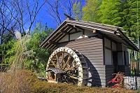 東京都 郷土の森 水車小屋