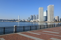 東京・豊洲・春海橋公園