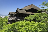 京都府 清水寺