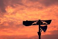 夕焼け空とカモメの街灯